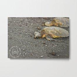 Sea Turtles in Hawaii Metal Print