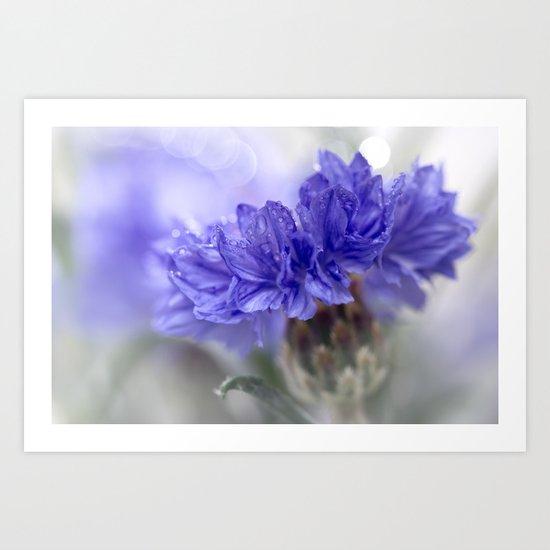 Blue Beauty.....  Art Print