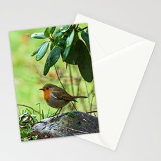 Robin in the spring Stationery Cards