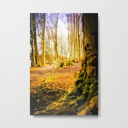 Moss Covered Tree Stump Hiking Path Forest bright Metal Print