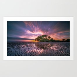 Broadleaf In Watts At Sunset Magenta Satuation Art Print