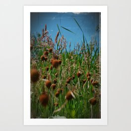 Lying in the Grass Art Print