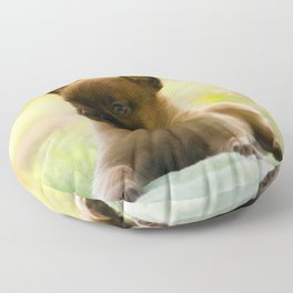 Malinois puppies in the soap blowing game Floor Pillow