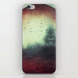 unReality - Fantastic Landscape with Red Planet iPhone Skin