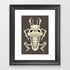 Insect Skull Framed Art Print