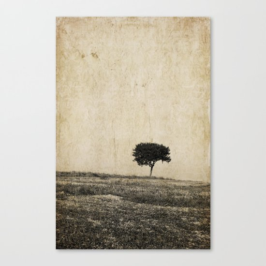lonely tree Canvas Print