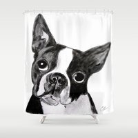 boston terrier Shower Curtains featuring Boston Terrier by Gooberella