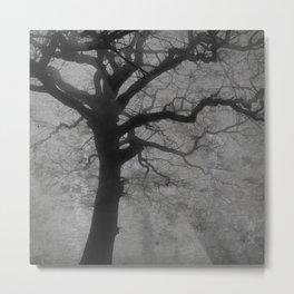 fog /Agat/  Metal Print