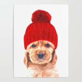 Cocker spaniel puppy with hat Poster