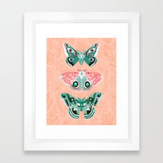 Lepidoptery No. 3 by Andrea Lauren  Framed Art Print