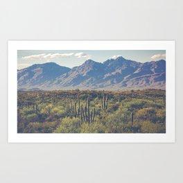 Wild West III - Tucson Art Print
