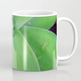 Agave with Raidrops Coffee Mug