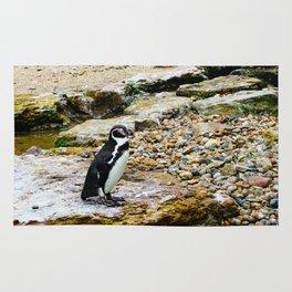 Penguin stare Rug