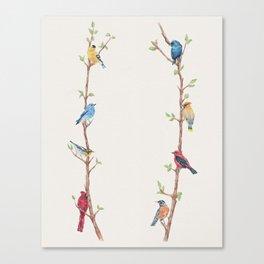 Bird Branches Canvas Print