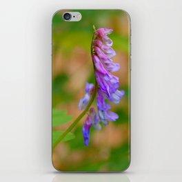 purple vetch iPhone Skin