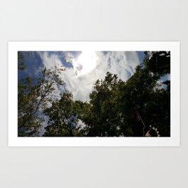 Falcon Flies Overhead Art Print