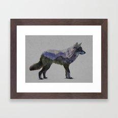 The Rocky Mountain Gray Wolf Framed Art Print