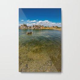 Mono_Lake California - 4 Metal Print