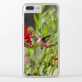 Rufous Hummingbird Feeding, No. 2 Clear iPhone Case