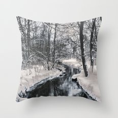 Almost frozen (3\4-BW, HDR) Throw Pillow