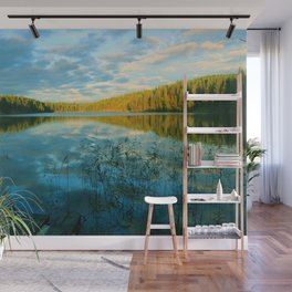 Earth, Water and Air Wall Mural