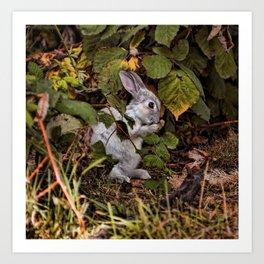 The Velveteen Rabbit Art Print