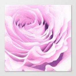 Sweet pastel rose Canvas Print