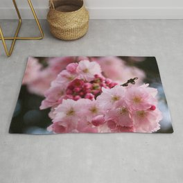 Japanese cherry blossoms in spring Rug