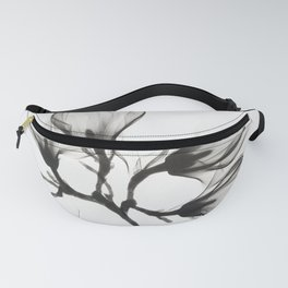 Magnolia Branch with Four Flowers  Fanny Pack
