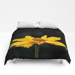 Bright Yellow And Black Comforters