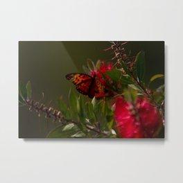 Autumn Buterfly Metal Print