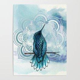 Aquarela hummingbird Poster