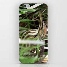 American Bittern - Take One iPhone & iPod Skin