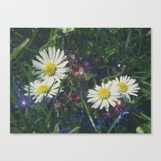Galaxy Daisies Canvas Print