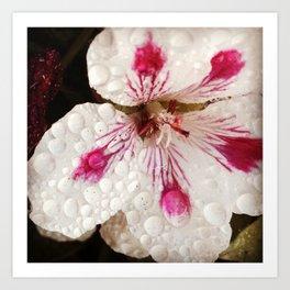 Flowers in the Summer Rain Art Print