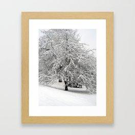 Snow-Covered Apple Tree Framed Art Print
