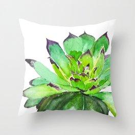green succulent 2 Throw Pillow