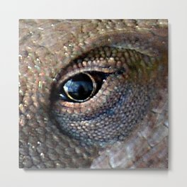 lizard eye Metal Print