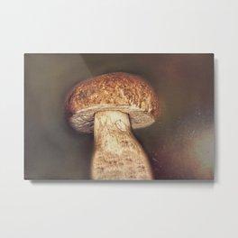 porcini mushrooms in the basket Metal Print