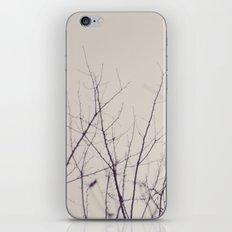 Winter's Bones iPhone & iPod Skin