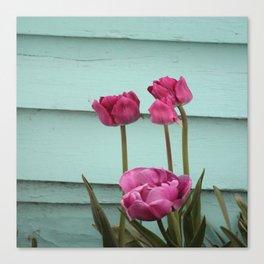 Tulips on Turqouise Canvas Print