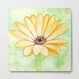 Orange aster flower Metal Print