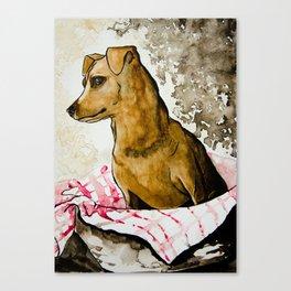 Tater Tot - Mini Pinscher Canvas Print