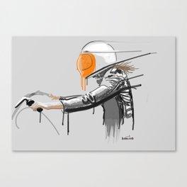 fevaaa Canvas Print