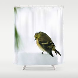 Mourning Prayer (Goldfinch) Shower Curtain