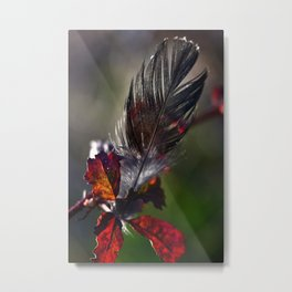 Customs of Nature Metal Print