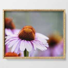 Pink Daisy Serving Tray