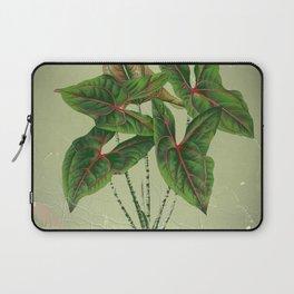 Grungy antique style  Botanical Art Laptop Sleeve