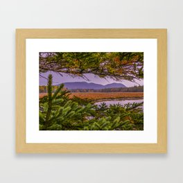 The Clarity in the Clearing Framed Art Print