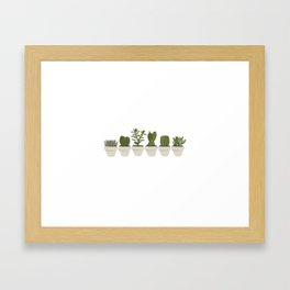 Cacti & Succulents - White Framed Art Print